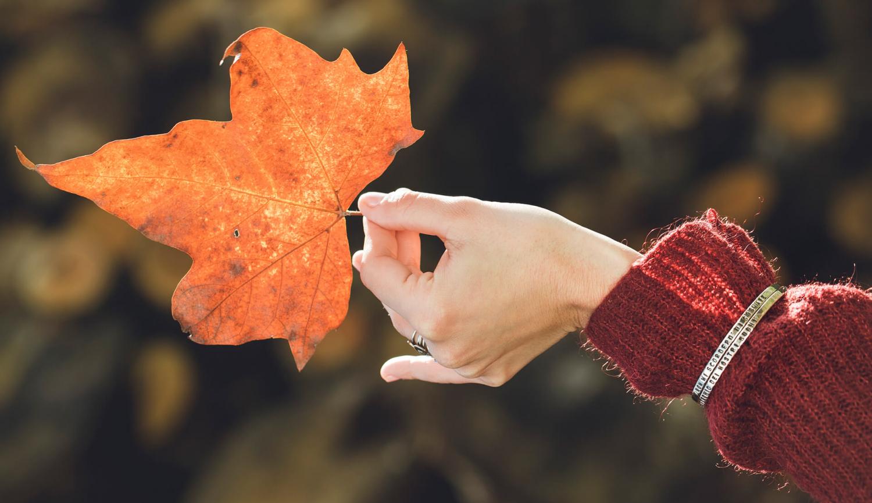 fabio-corsini-gioielli-argento-ottone-personalizzati-autunno-inverno-foto-con-foglia-autunnale